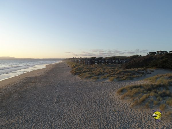 At The Dunes Beachfront Rental Homes